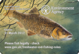 Angliai horgászengedély