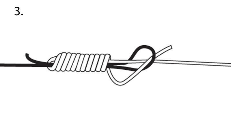 Horgász kötések - Az Albright kötés