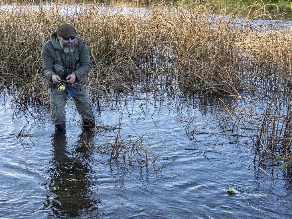 gázolás kis folyóban csukára vadászva, pikehunting on the small river
